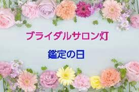 サロン灯 【鑑定の日】