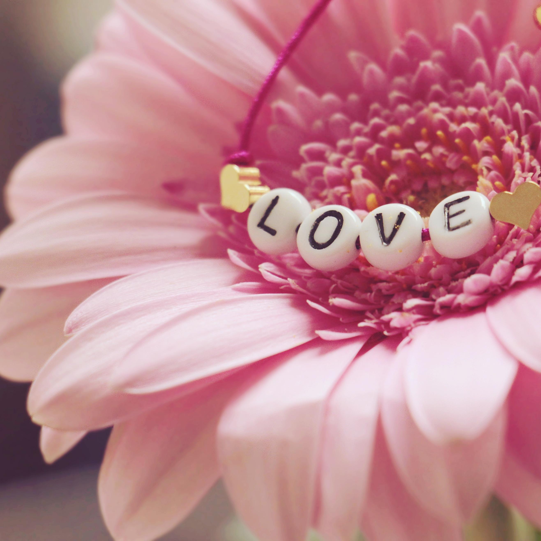 💗愛の意識革命❗春は出会いの時、あなたの心にも桜🌸を咲かせましょう🎵